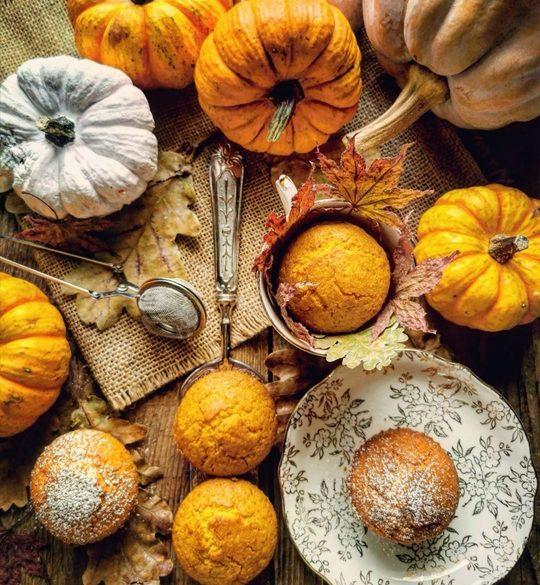 visione dall'alto di una tavola con muffins e zucche